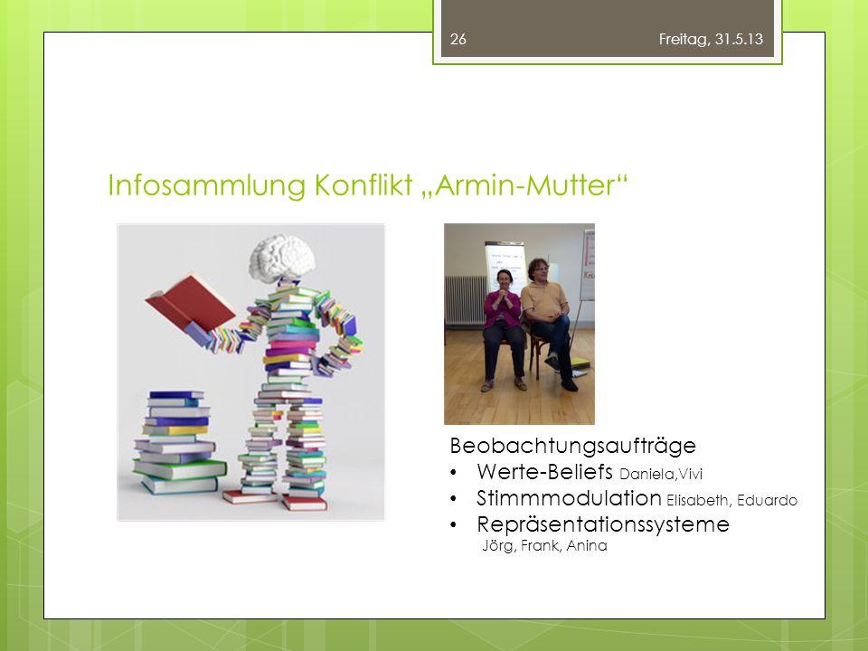 """Infosammlung Konflikt """"Armin-Mutter"""