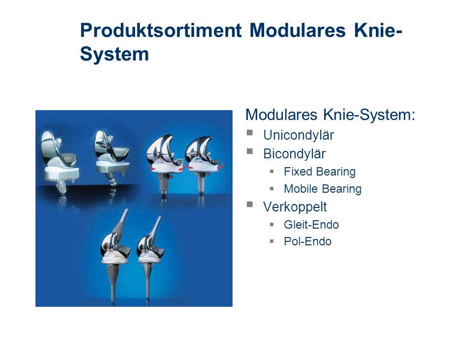 Produktsortiment Modulares Knie-System