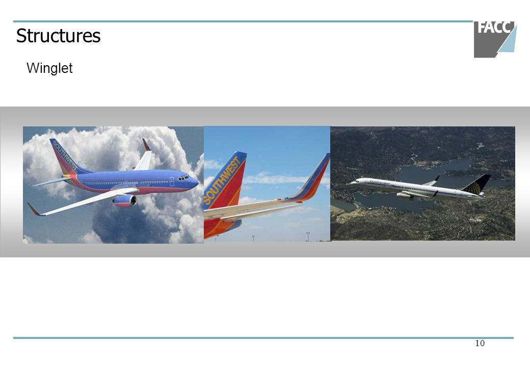 Structures Winglet