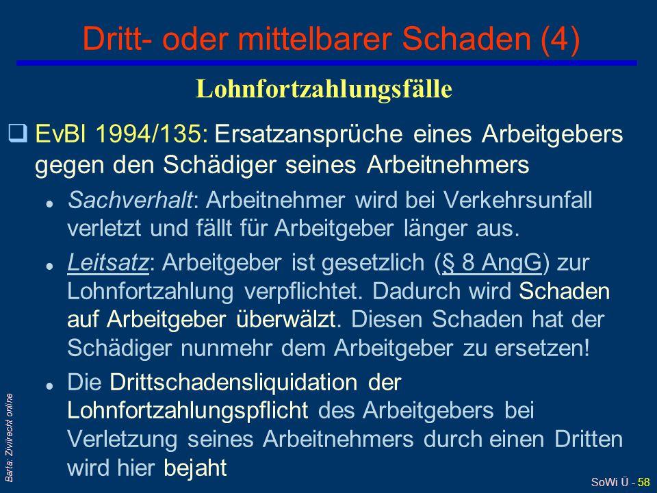 Dritt- oder mittelbarer Schaden (4)