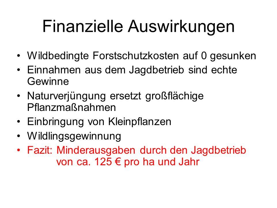 Finanzielle Auswirkungen