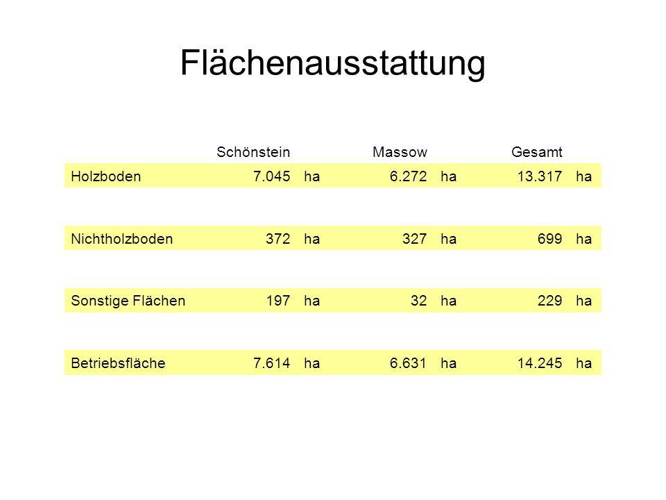 Flächenausstattung Schönstein Massow Gesamt Holzboden 7.045 ha 6.272