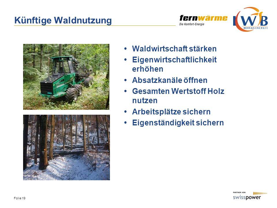 Künftige Waldnutzung • Waldwirtschaft stärken