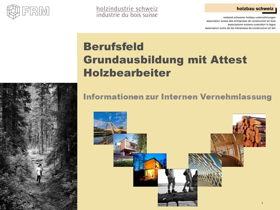 Berufsfeld Grundausbildung mit Attest Holzbearbeiter Informationen zur Internen Vernehmlassung