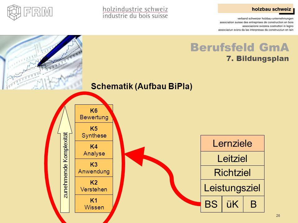 Schematik (Aufbau BiPla)