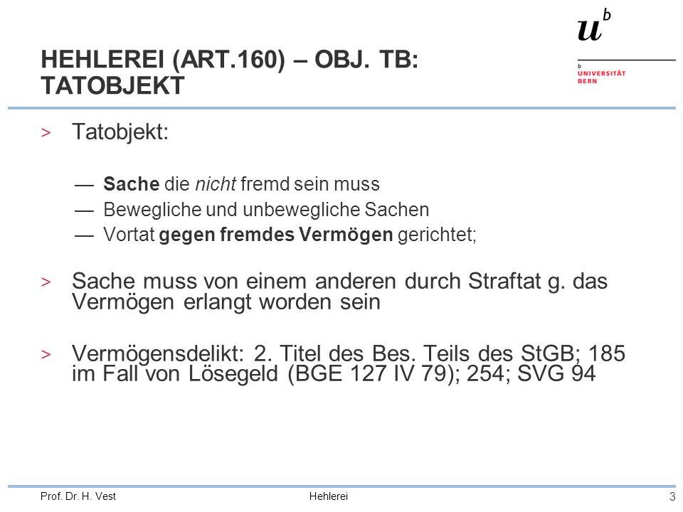 HEHLEREI (ART.160) – OBJ. TB: TATOBJEKT