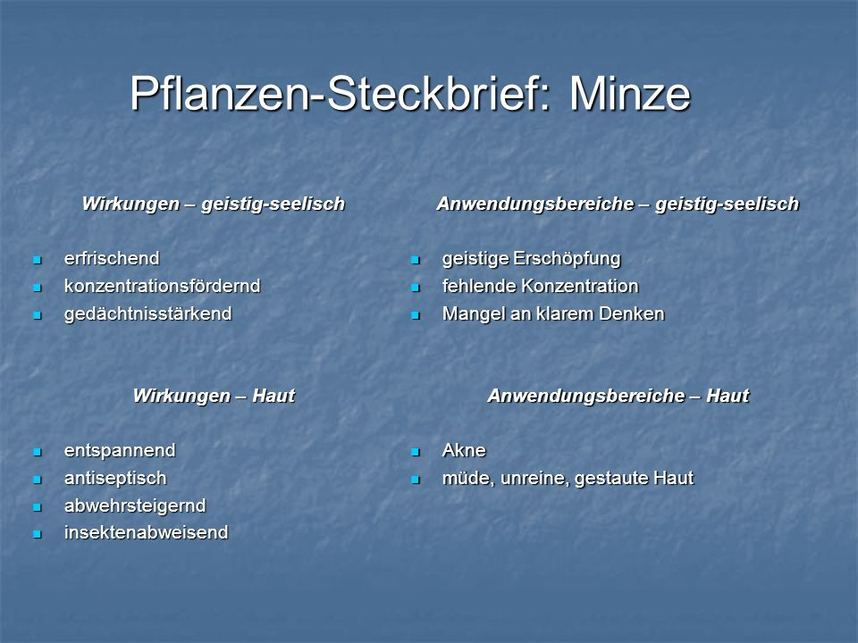 Pflanzen-Steckbrief: Minze