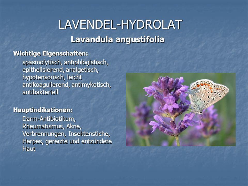 LAVENDEL-HYDROLAT Lavandula angustifolia