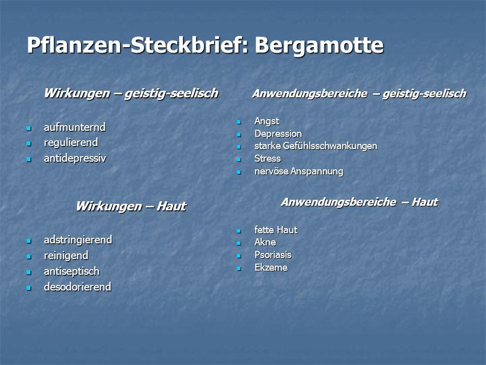 Pflanzen-Steckbrief: Bergamotte