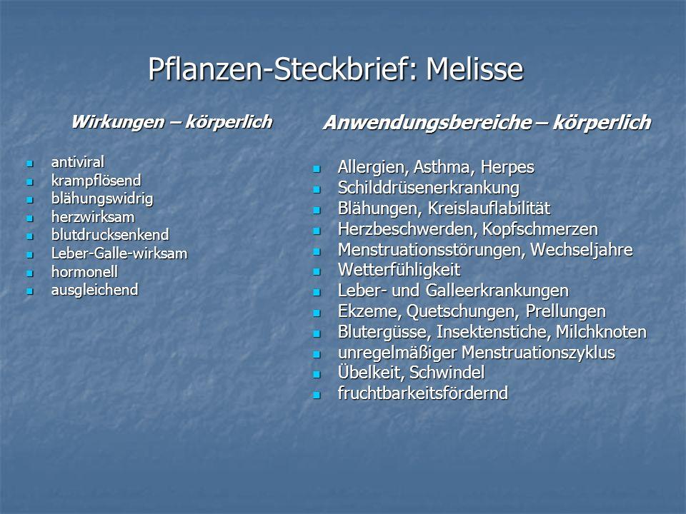 Pflanzen-Steckbrief: Melisse