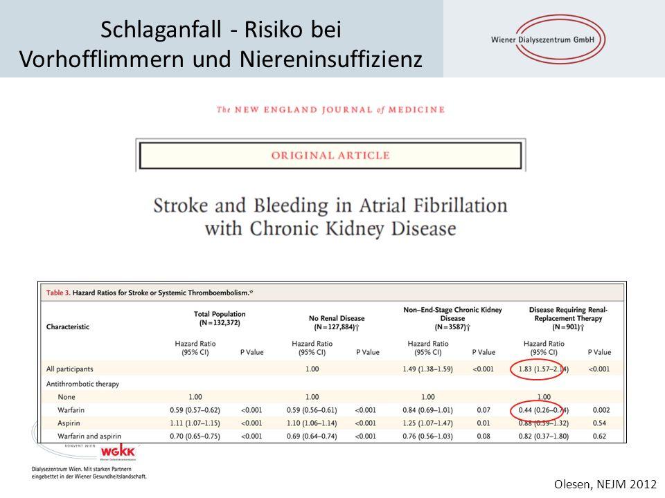 Schlaganfall - Risiko bei Vorhofflimmern und Niereninsuffizienz