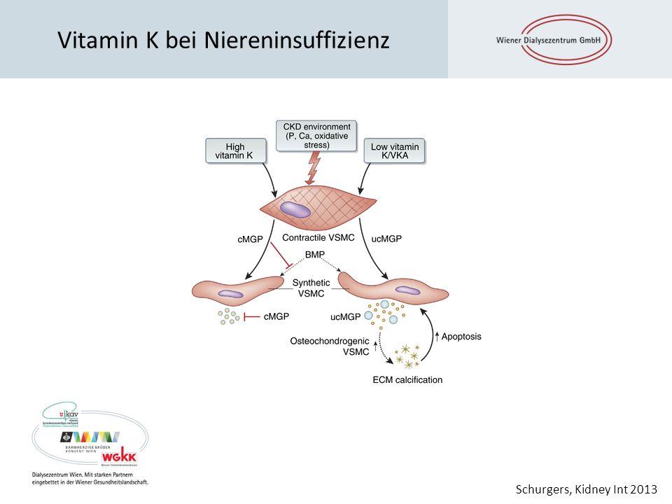 Vitamin K bei Niereninsuffizienz