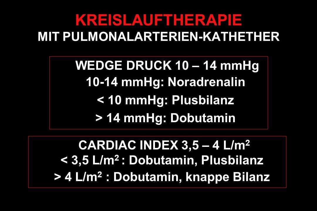 KREISLAUFTHERAPIE MIT PULMONALARTERIEN-KATHETHER