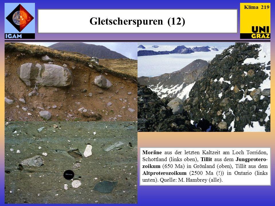 Klima 219 Gletscherspuren (12)