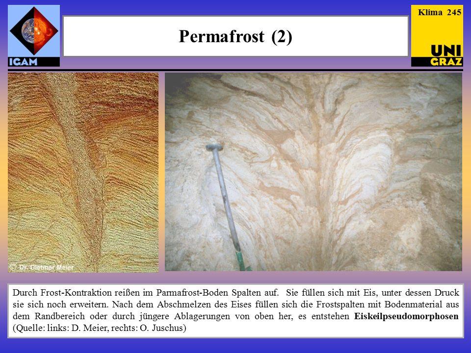 Klima 245 Permafrost (2)