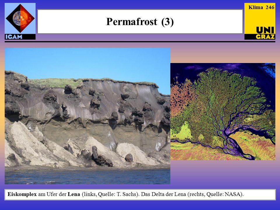 Klima 246 Permafrost (3) Eiskomplex am Ufer der Lena (links, Quelle: T.