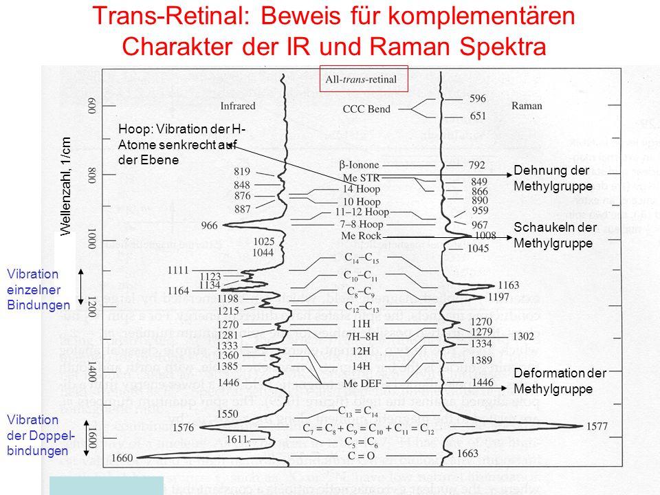 Trans-Retinal: Beweis für komplementären Charakter der IR und Raman Spektra