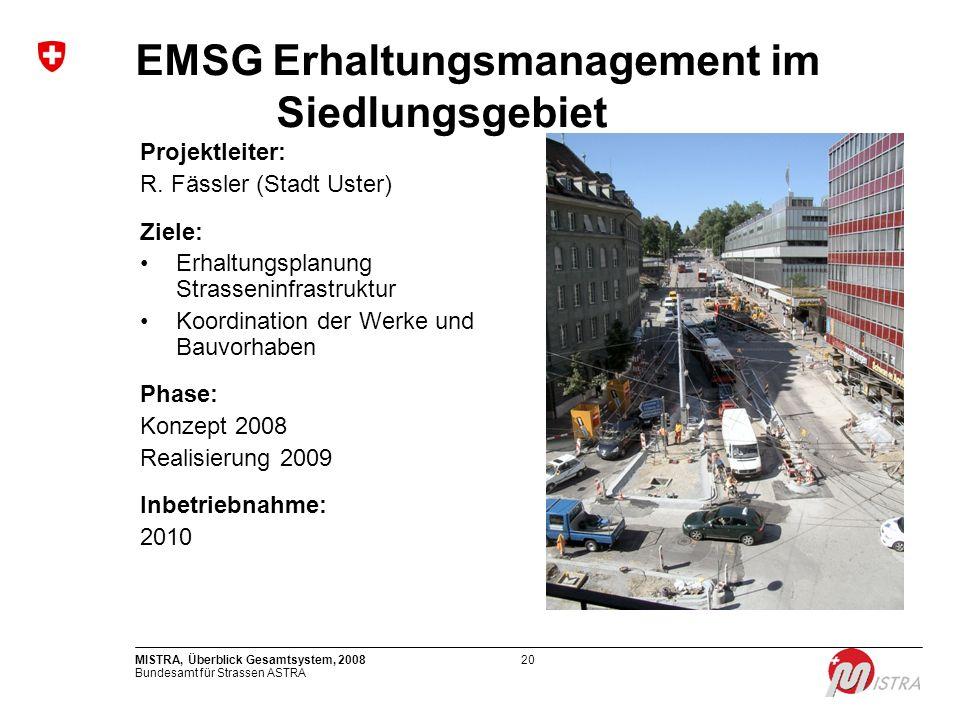 EMSG Erhaltungsmanagement im Siedlungsgebiet