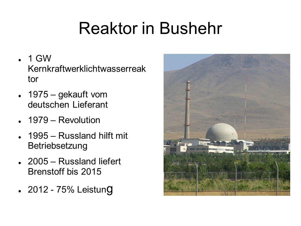 Reaktor in Bushehr 1 GW Kernkraftwerklichtwasserreak tor