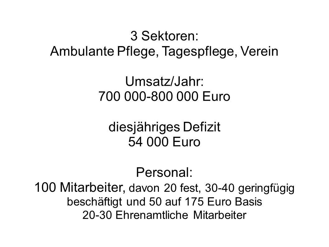 Ambulante Pflege, Tagespflege, Verein Umsatz/Jahr: