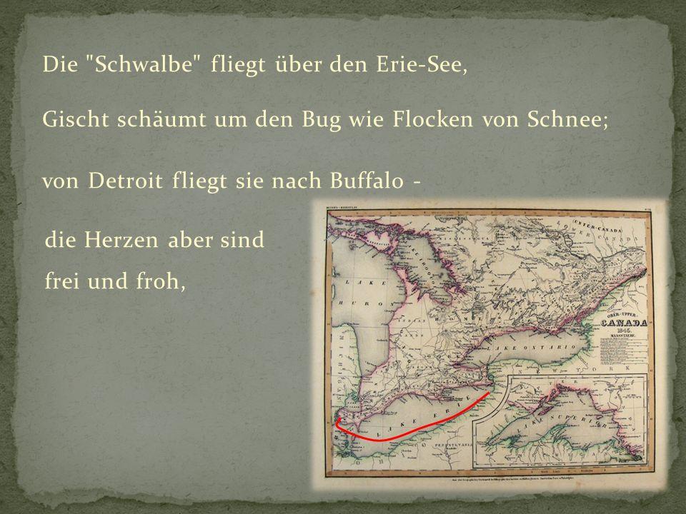 Die Schwalbe fliegt über den Erie-See,