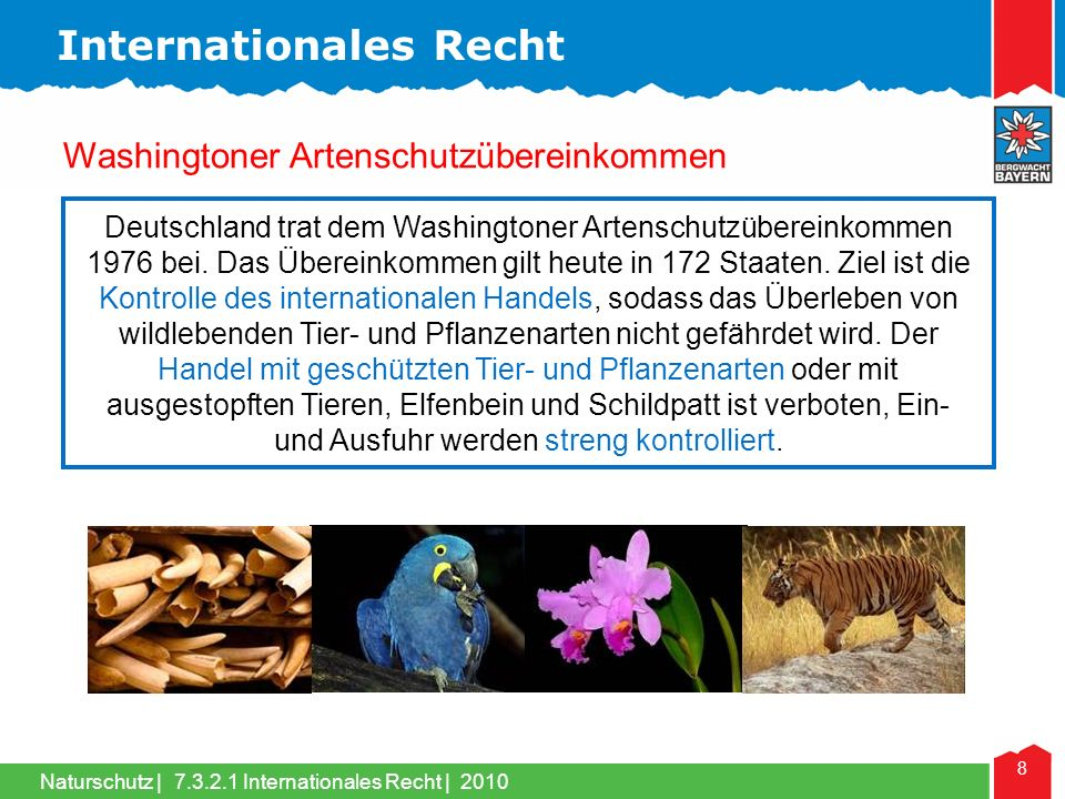 Internationales Recht