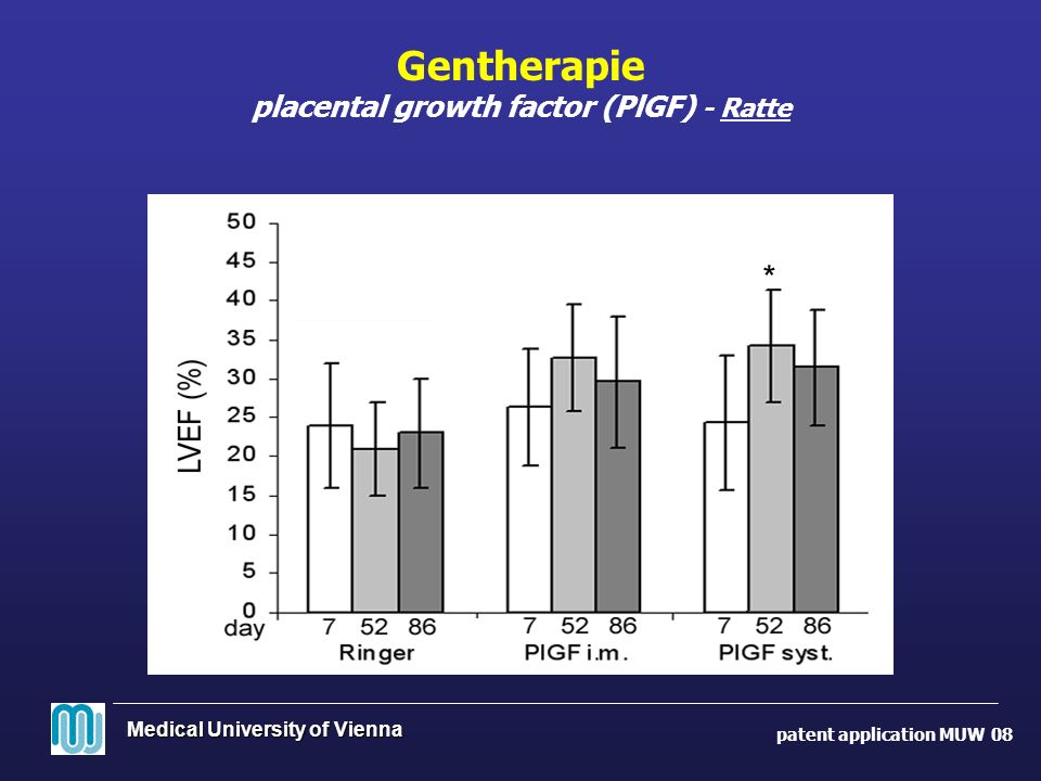 Gentherapie placental growth factor (PlGF) - Ratte