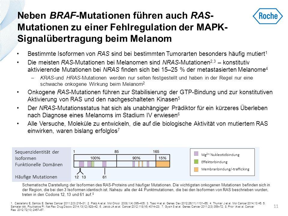 Neben BRAF-Mutationen führen auch RAS-Mutationen zu einer Fehlregulation der MAPK-Signalübertragung beim Melanom
