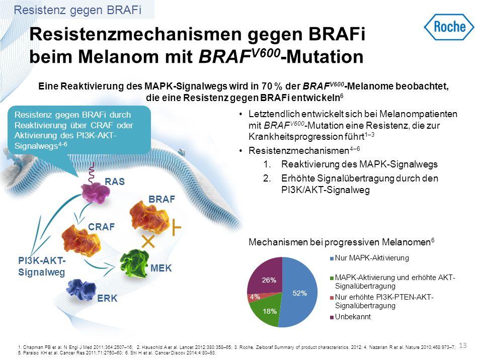 Resistenzmechanismen gegen BRAFi beim Melanom mit BRAFV600-Mutation
