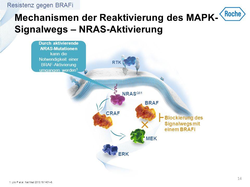 Mechanismen der Reaktivierung des MAPK-Signalwegs – NRAS-Aktivierung