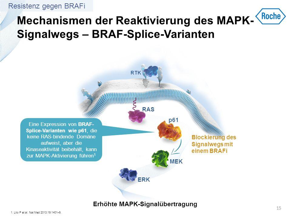 Erhöhte MAPK-Signalübertragung