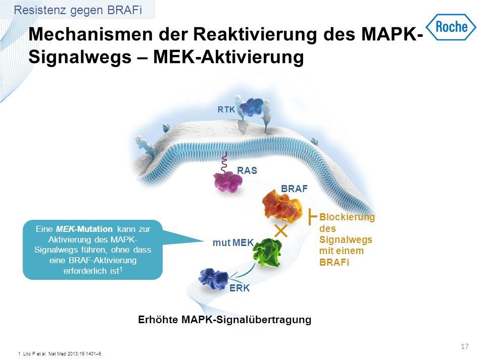 Mechanismen der Reaktivierung des MAPK-Signalwegs – MEK-Aktivierung