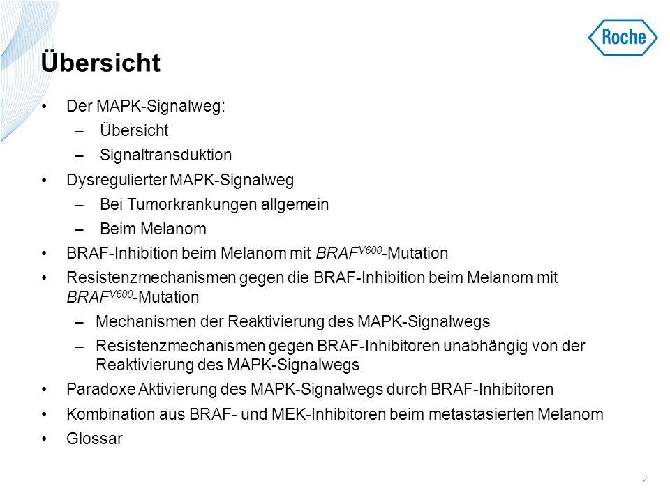 Übersicht Der MAPK-Signalweg: Übersicht Signaltransduktion