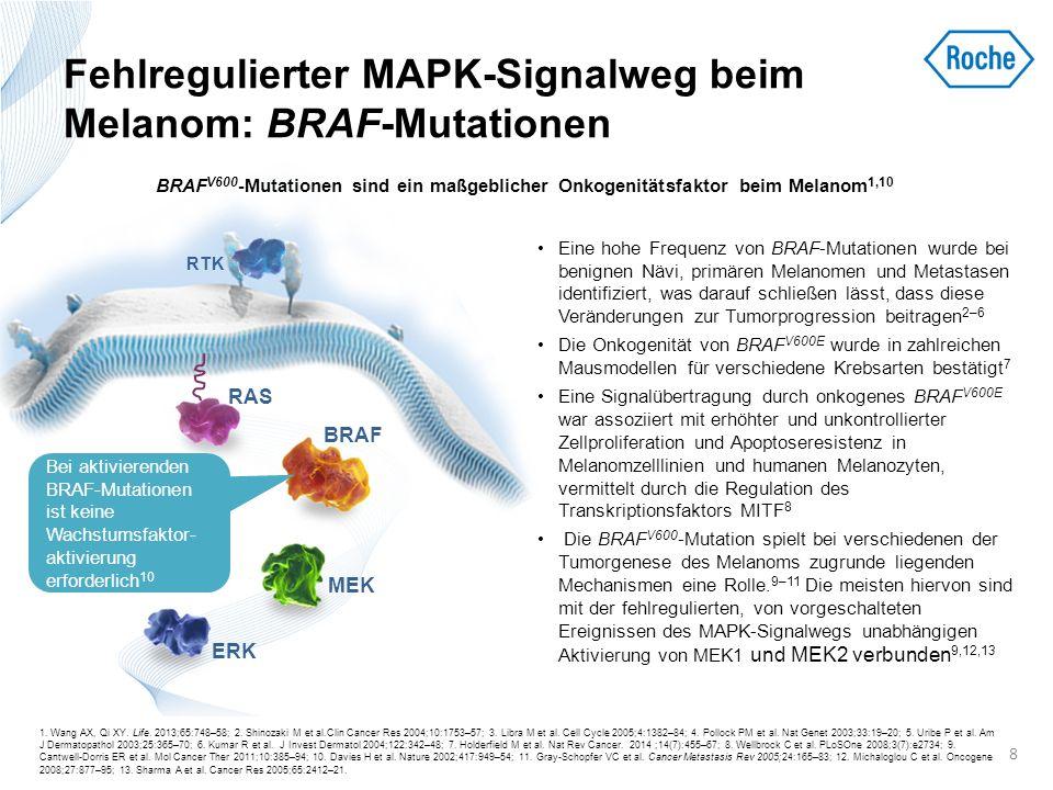 Fehlregulierter MAPK-Signalweg beim Melanom: BRAF-Mutationen