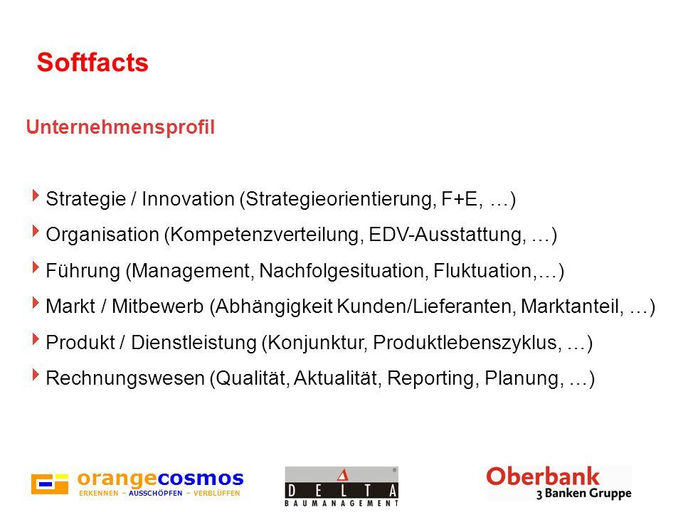 Softfacts orangecosmos Unternehmensprofil