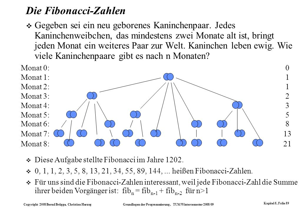 Die Fibonacci-Zahlen