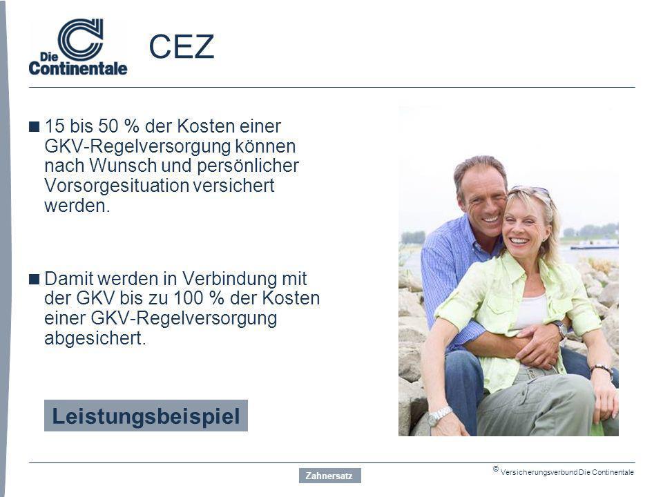 CEZ Leistungsbeispiel