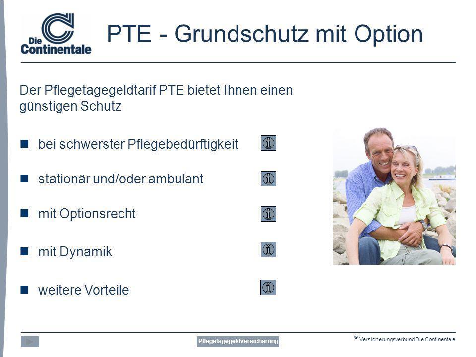 PTE - Grundschutz mit Option