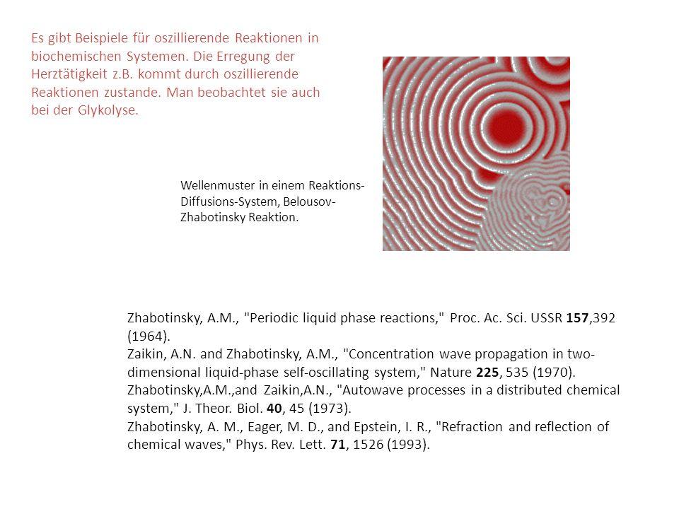 Es gibt Beispiele für oszillierende Reaktionen in biochemischen Systemen. Die Erregung der Herztätigkeit z.B. kommt durch oszillierende Reaktionen zustande. Man beobachtet sie auch bei der Glykolyse.