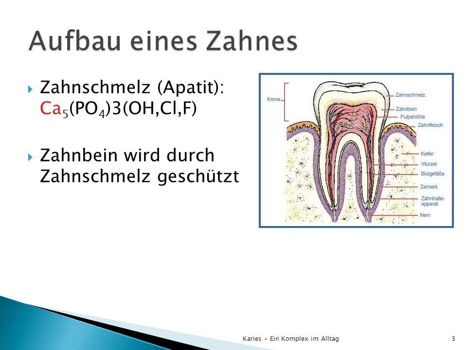 Aufbau eines Zahnes Zahnschmelz (Apatit): Ca5(PO4)3(OH,Cl,F)