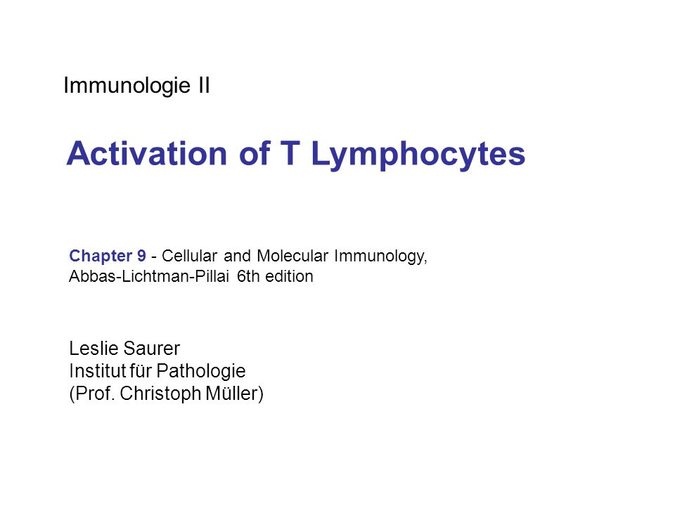 Activation of T Lymphocytes