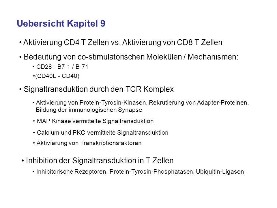 Uebersicht Kapitel 9Aktivierung CD4 T Zellen vs. Aktivierung von CD8 T Zellen. Bedeutung von co-stimulatorischen Molekülen / Mechanismen: