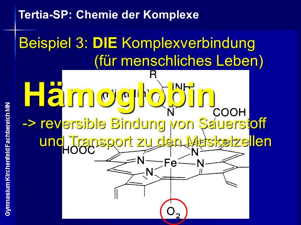 Beispiel 3: DIE Komplexverbindung (für menschliches Leben)