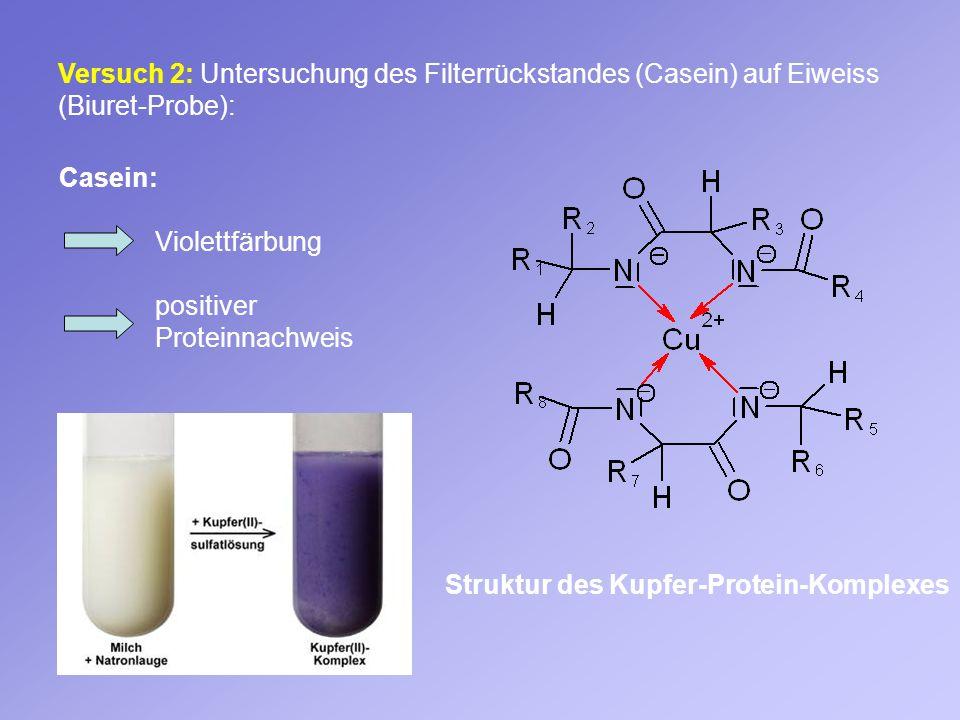 Versuch 2: Untersuchung des Filterrückstandes (Casein) auf Eiweiss (Biuret-Probe):