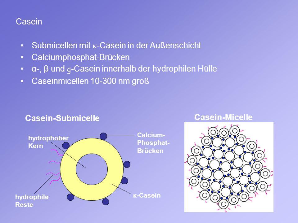 Submicellen mit κ-Casein in der Außenschicht Calciumphosphat-Brücken