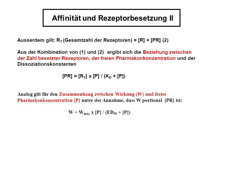 Affinität und Rezeptorbesetzung II