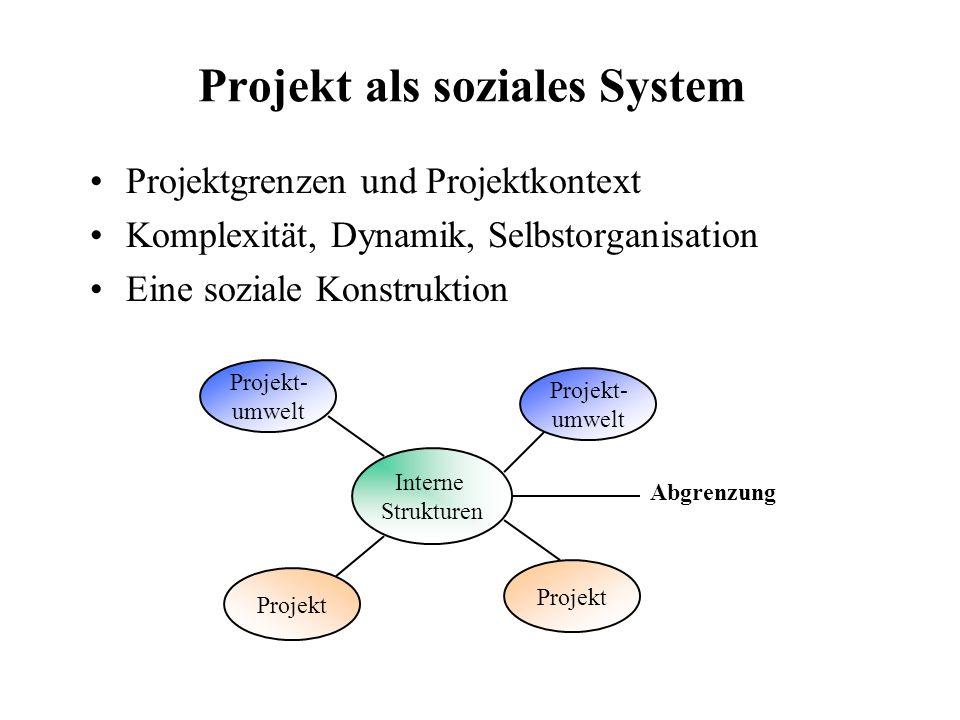 Projekt als soziales System