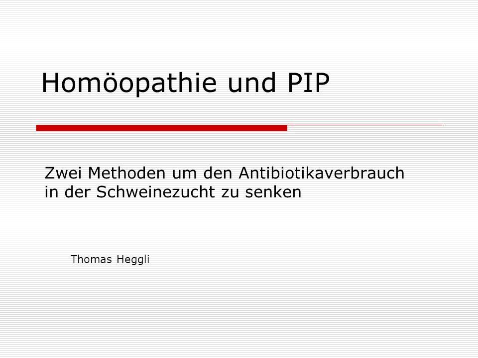 Homöopathie und PIP Zwei Methoden um den Antibiotikaverbrauch in der Schweinezucht zu senken.