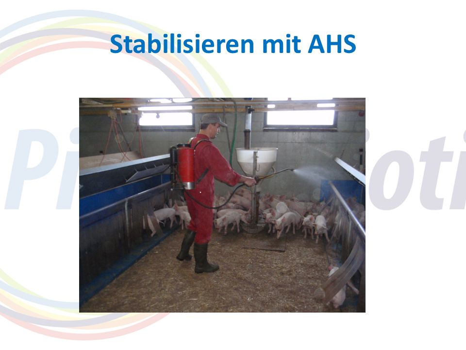 Stabilisieren mit AHS