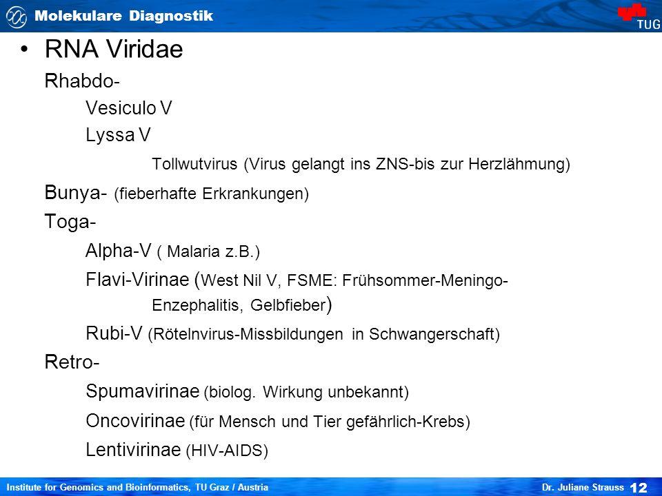 RNA Viridae Rhabdo- Vesiculo V. Lyssa V. Tollwutvirus (Virus gelangt ins ZNS-bis zur Herzlähmung)